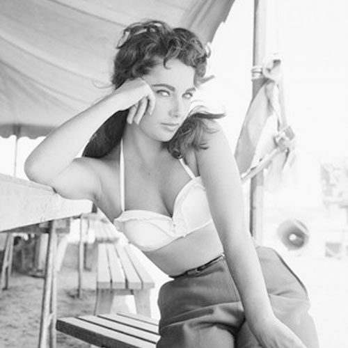 Short Bio on Elizabeth Taylor